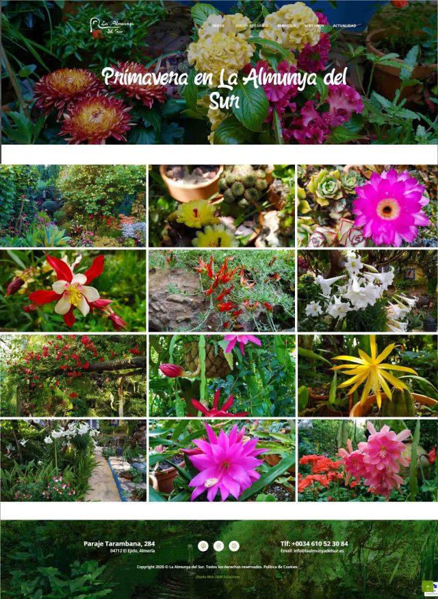 Diseño de la Página Primavera en La Almunya del Sur