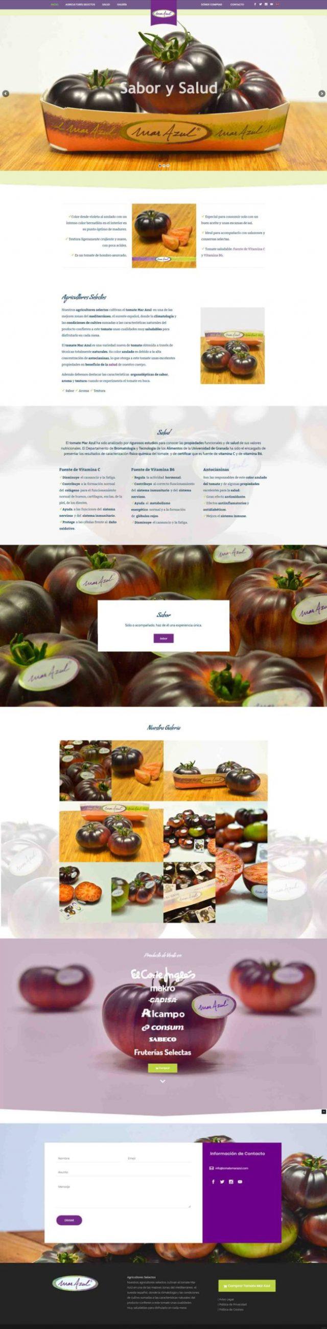 Diseño Web OnePage Tomate Mar Azul